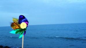 From the Pondicherry promenade. Photo by Amrita Das.