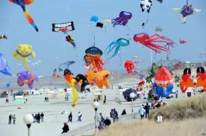 Gujarat Uttarayan Kite Festival Kutch