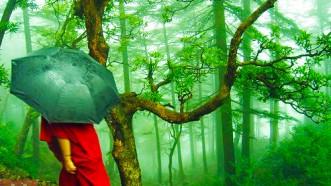 Monsoon destination in India
