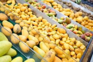 The grand International Mango Festival, Delhi